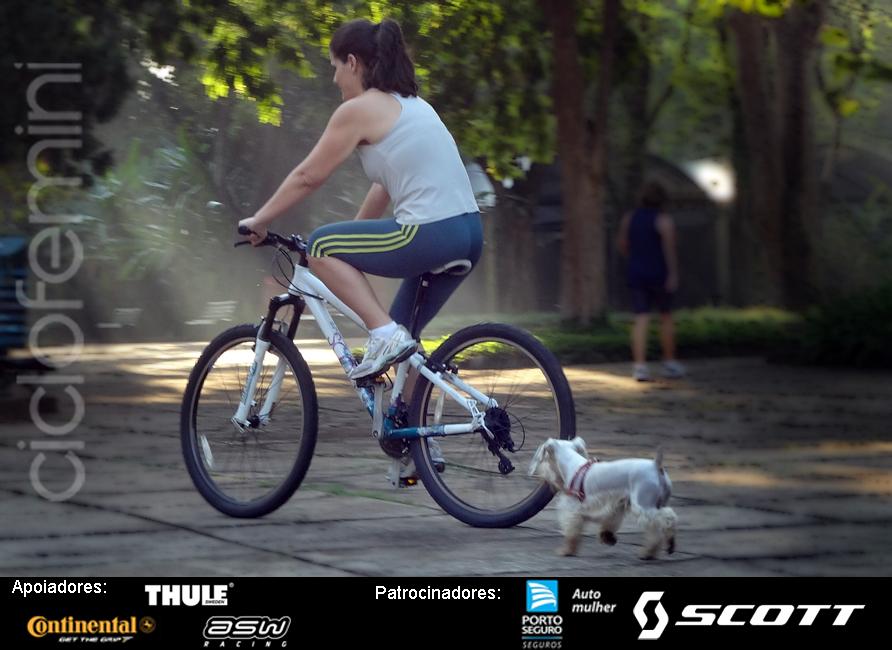 Bicicleta & Sol é Verão 5