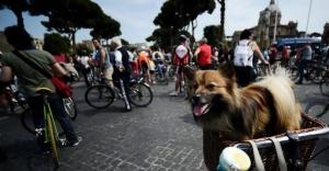 bike italia